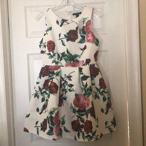 NWT Ivory Rose Dress